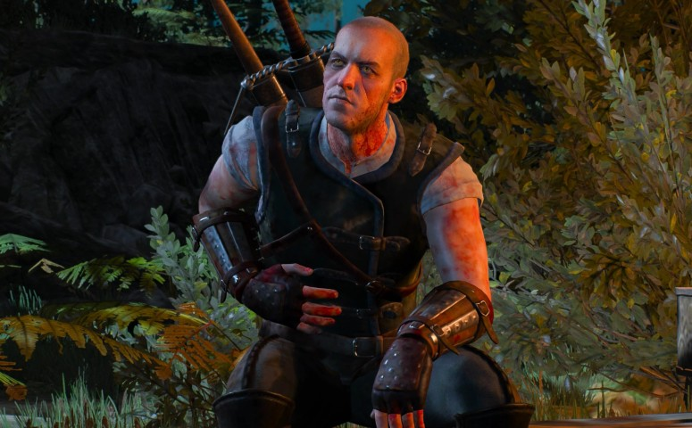 Wounded witcher explains himself